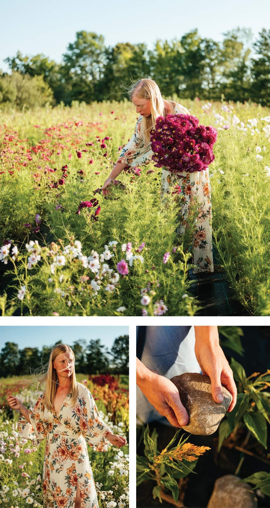 Melanie Harrington on her flower farm