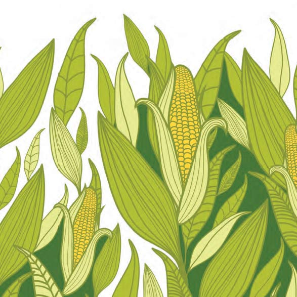 Must, Must, Must Fall 2020 - Image of corn
