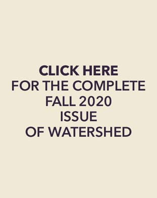 Click here for the complete fall 2020 issue of watershed