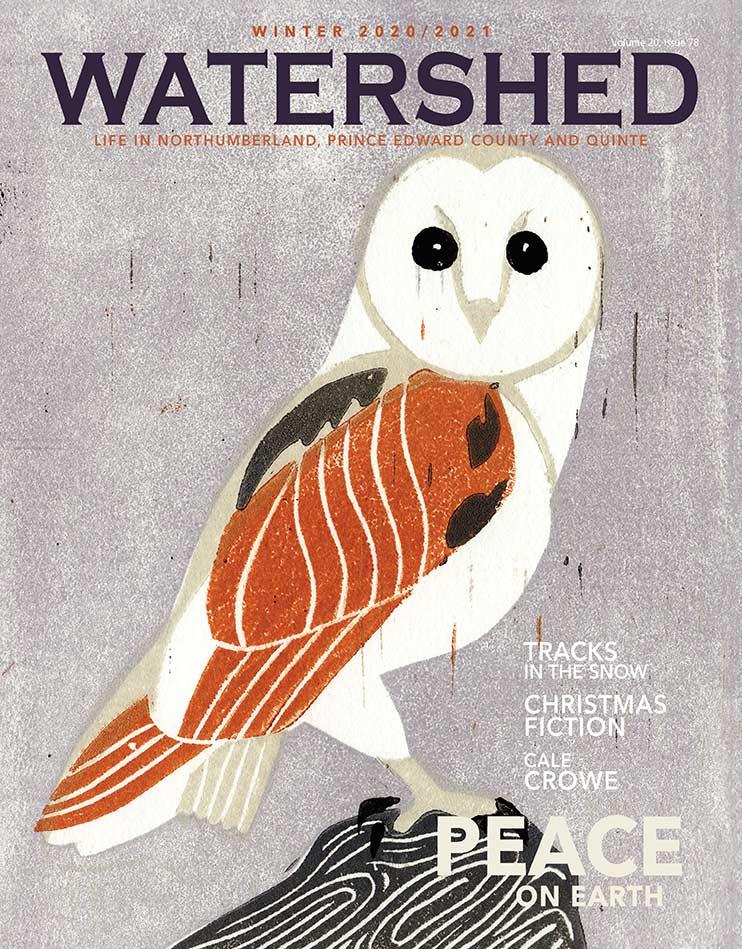 Watershed Magazine Winter 2020/2021