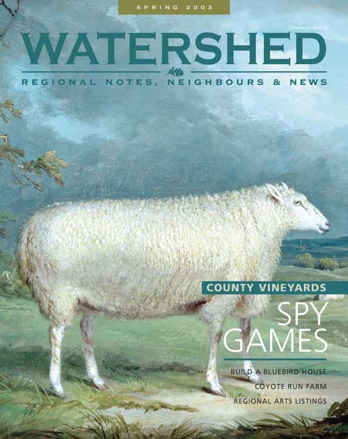Watershed Magazine Spring 2003 Cover